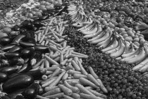 Durée Préavis Démission CCN Fruits et Légumes